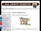 all-about-ferrets.com