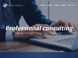 amuseagency.com
