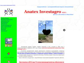 anatex.chat.ru