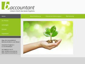 b-accountant.at