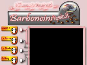 barbonciniroseto.it