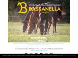 bassanella.it