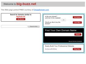 big-buzz.net