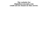 bigmikesconcepts.com