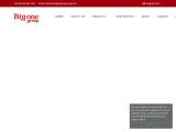 bigonegroup.com