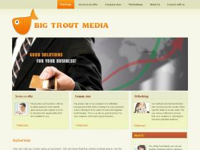 bigtroutmedia.co.uk