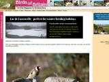 birdsofbritain.co.uk