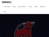 birminghamkorfball.co.uk