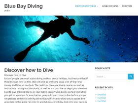 bluebaydiving.com