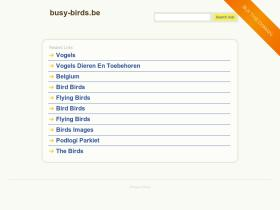 busy-birds.be