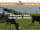 calonwen.co.uk