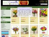 canadianflowershoppe.ca
