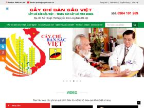 caychi.com.vn