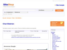 chat-siberien.sitoshop.fr