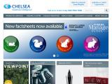 chelseafs.co.uk