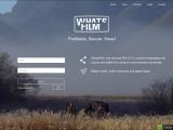 china-cinema.com