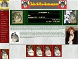 chinchilla-homepage.de