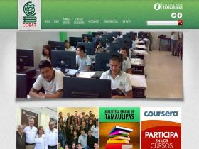 cobat.edu.mx