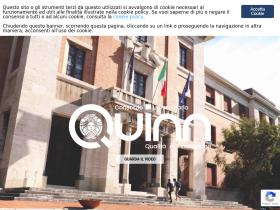 consorzioquinn.it