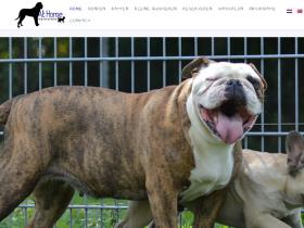 dierencreche-athome.nl