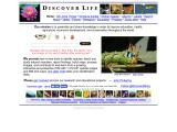 discoverlife.org