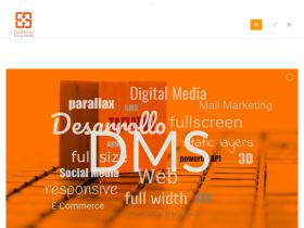 dmsolutions.com.mx