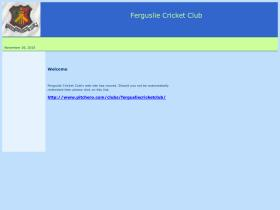 fergusliecricketclub.co.uk