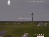 flaminglips.com