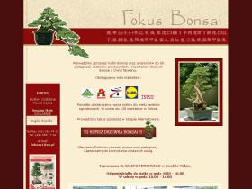 fokus-bonsai.pl