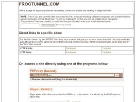 frogtunnel.com