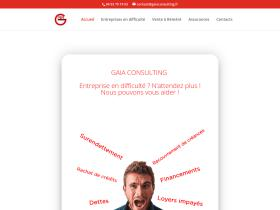 gaiaconsulting.fr