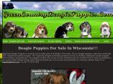 greencountrybeaglepuppies.com