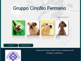 gruppocinofilofermano.it