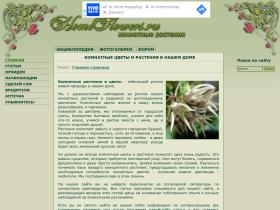 homeflowers.ru