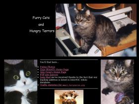 hungrycats.org