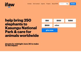 ifaw.org