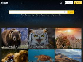 images.yandex.by