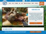internationalanimalrescue.org