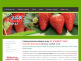 jkpstrawberry.pl