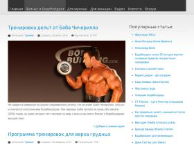king-of-fitness.com