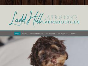 laddhilllabradoodles.com