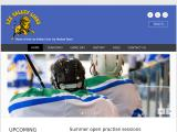 leevalleylions.co.uk