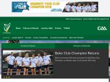 leinstergaa.ie