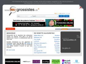 les-grossistes.ch