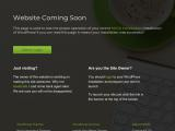 libertymarketingconsultants.com
