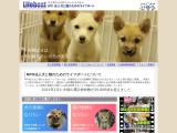 lifeboatjapan.org