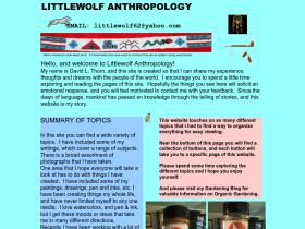 littlewolf.us Analytics Stats