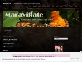 maravillate.files.wordpress.com