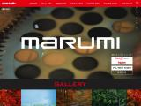 marumi-filter.co.jp