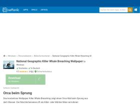 national-geographic-killer-whale-breaching-wallpaper.softonic.de